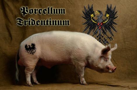 porcellum-tridentinum